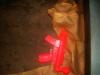 red-gun-new