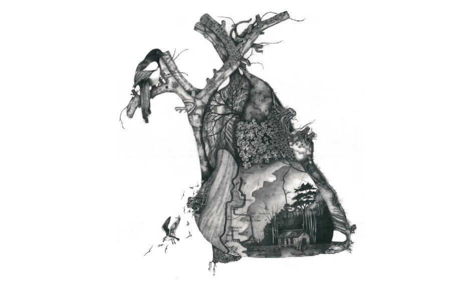 Terrain:Anatomical Landscapes/Dovedale. Jane Samuels 2014
