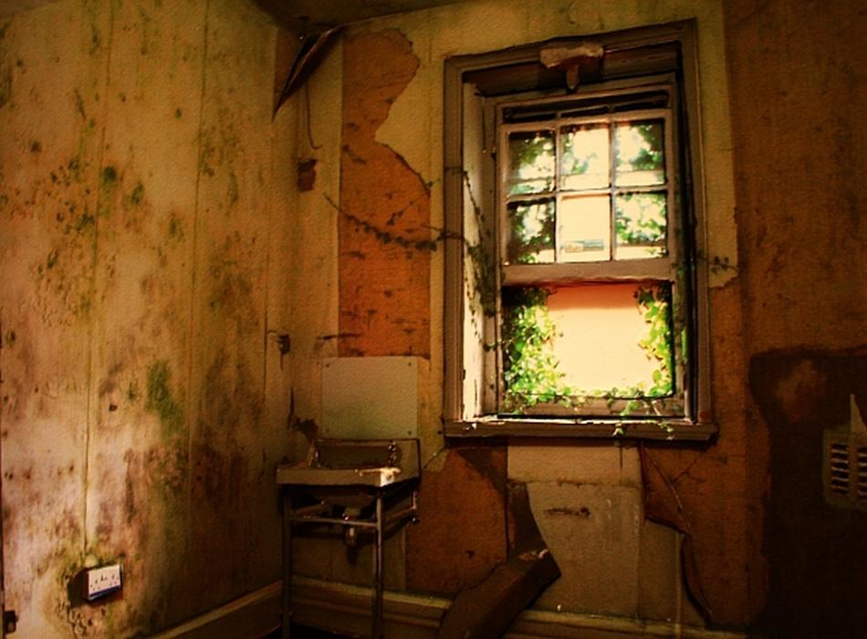 Mid-Wales Asylum